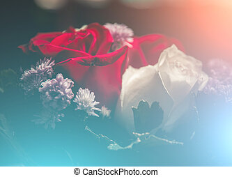 Beautiful roses flowers in soft styleFloral background and...