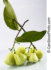green rose apple on white background