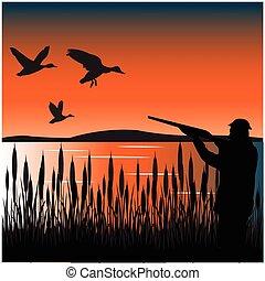 Huntsman on duck - Huntsman with handgun hunts on duck in...