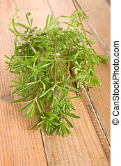 Galium aparine - Freshly picked galium aparine bunch on...