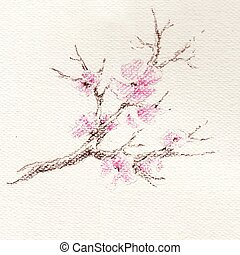 Watercolor branch of cherry blossoms