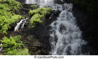 Amicalola Falls Main Falls Loop - The falls at Amicalola...