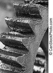 Gear wheel cog and teeth - Black and white picture of a...
