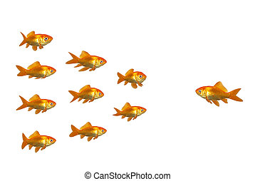 Directing goldfish - A goldfish giving instructions to his...