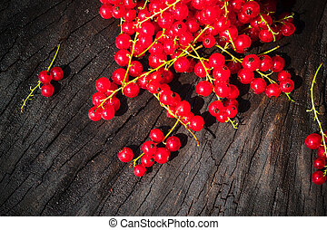 red currant fruit scattered wooden bench table - Red currant...