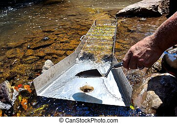 Gold panning, mining in a river - Panning for gold in a...