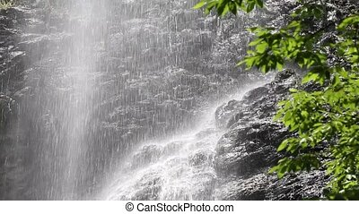 waterfall with green leaves