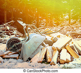 Old wheelbarrow with wood logs aginst forest - Winter time concept