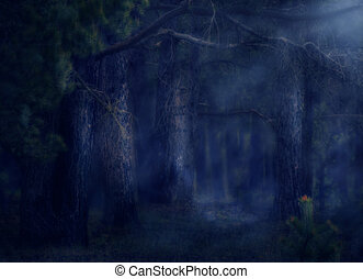 Magical Forest - Dark deep magical forest with fog,...