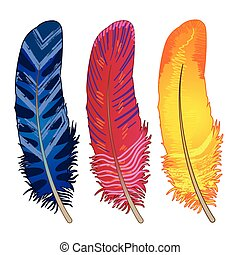 Set of  blue, red, yellow feathers
