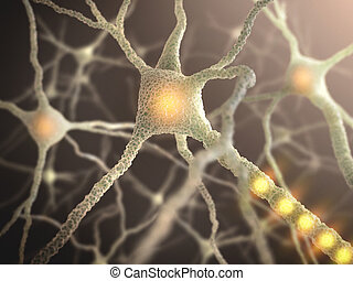 Nerve Cell - Interconnected neurons transferring information...