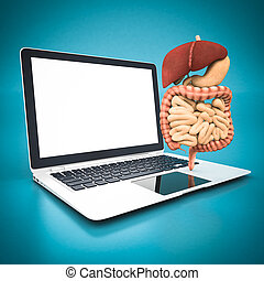 model of the digestive system and white laptop on a blue...