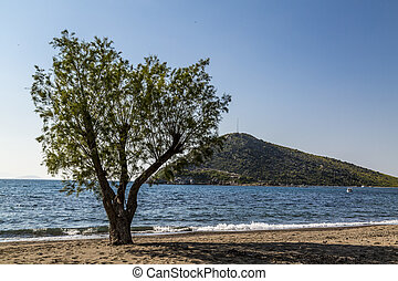 Bodrum, Turkey - View of Bodrum, Aegean coast of Turkish...