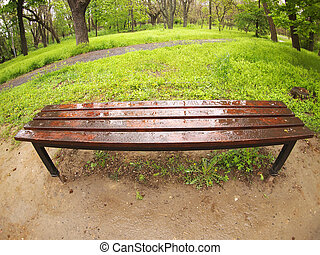 Bench in the park just after a spring rain
