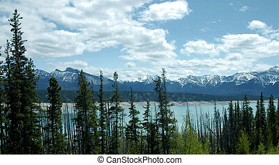 MOUNTAIN SCENE IN THECANADIAN ROCKIES