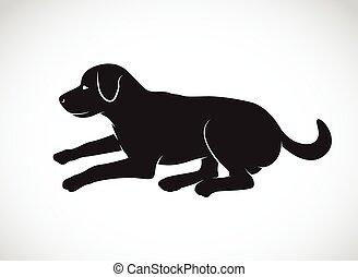 Vector, beeld, van, een, dog, labrador, op, witte,...