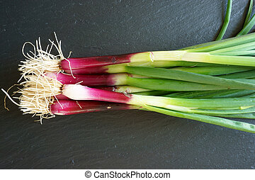 Fresh Spring Onions on a platte - Fresh red Spring Onions on...