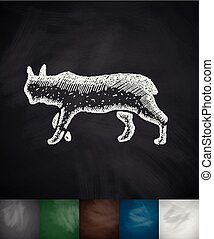 lynx icon Hand drawn vector illustration Chalkboard Design