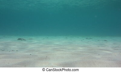 Clear water with sandy bottom loop - A loop of clear water...