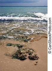 beach rock in republica dominicana - beach rock stone in...