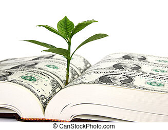 Leaf bud growing out of a book covered with dollars - symbol...