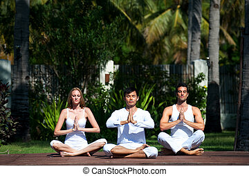 Group Practicing Yoga - An attractive group of people...