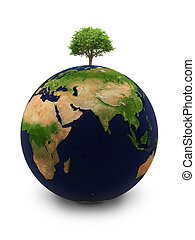 the Earth with a tree - Planet the Earth with a tree on the...