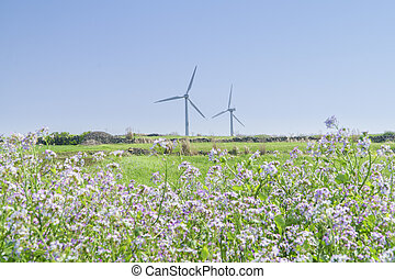 Landscape of green barley field and wind generator with...