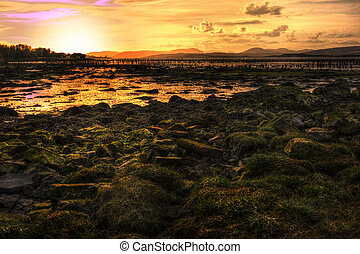 A shot of a river bank in Largs, Scotland