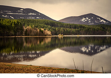 Loch Morlich - Water reflection at Loch Morlich in Scotland