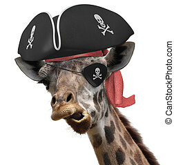 Funny pirate giraffe - Funny animal picture of a cool...
