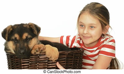 child and a puppy - cheerful child and a puppy in a wicker...