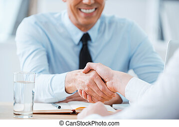 Sealing a deal. Close-up of two business people shaking...