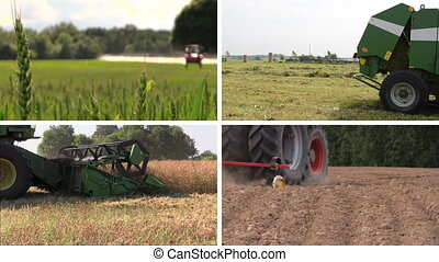 agricultural work collage - Tractor spray field, make sodder...