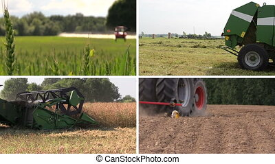 "agricultural work collage - ""Tractor spray field, make..."
