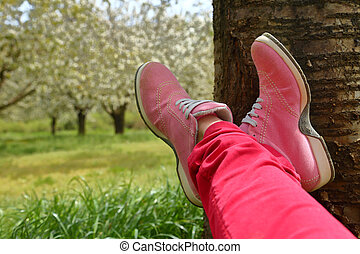 Feet in pink shoes on green field with flowers and trees