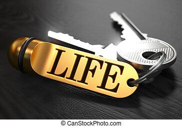 Life written on Golden Keyring - Keys and Golden Keyring...