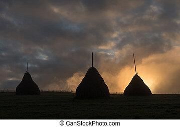haystack - three haystack in foggy field