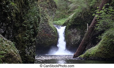 Gushing Water from Punch Bowl Falls - Movie of Gushing Water...