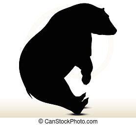 animal bear silhouette on white background
