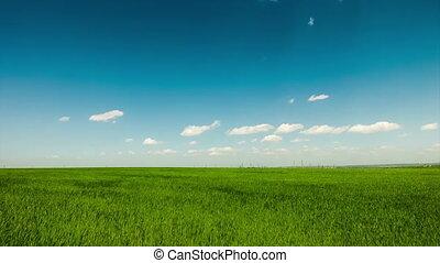 Green field, clouds, blue sky, sunn - Green field clouds...