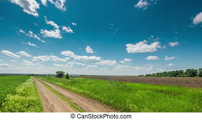 dirt road through the field, green grass, clouds Ukraine...