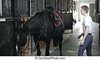 Offsaddling the Horse - Slow motion of young guy unsaddling...