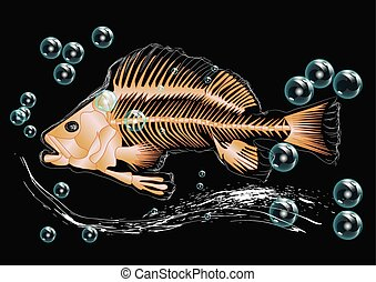 fish skeleton and bubbles isolatedon black background