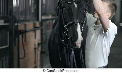 Horse Behavior - Close up of horseman taking the bridle off...