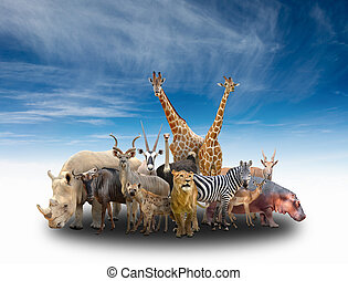 group of africa animals with blue sky