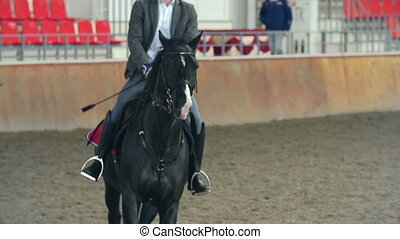 Rising Trot - Tilt down the horse rider posting on the horse...