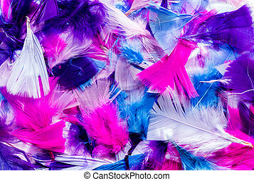 Cut Color Feathers - Mixture of colorful cut feathers,...