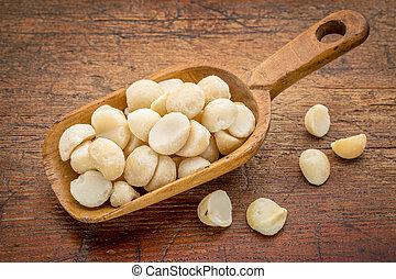 scoop of macadamia nuts - macadamia nuts on a rustic, wooden...