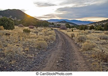 Cottonwood Canyon Road - A rugged dirt road crossing a high...
